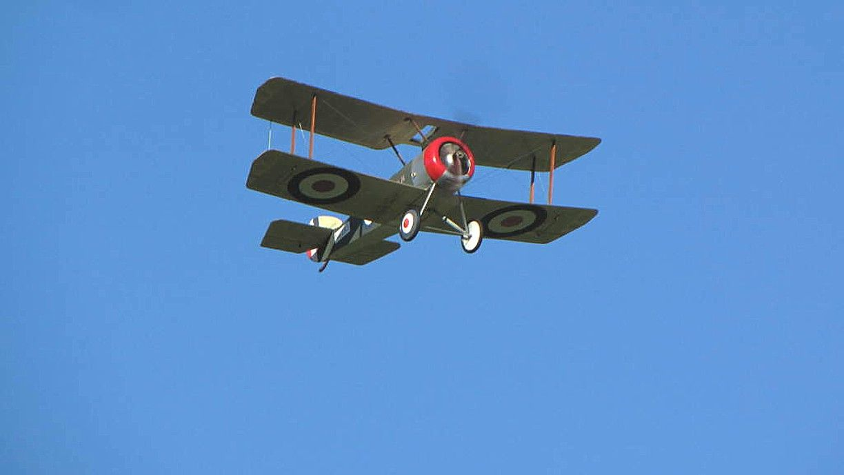 "Sopwith Pup 36"" Electric Scale"